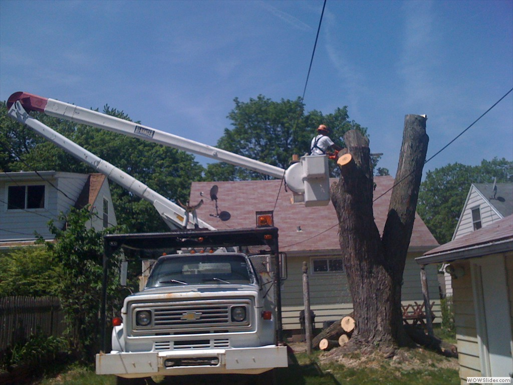 WE ARE METICULOUS IN AVOIDING POWER LINES, CARS AND HOUSES